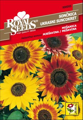RS_Bazilika drobnolistna_oro