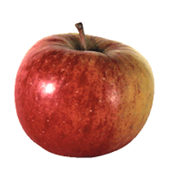 jabuka-topas