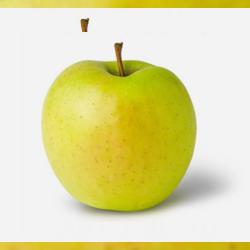 jabuka-zlatni-delises