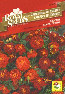 rs kadifica brocade