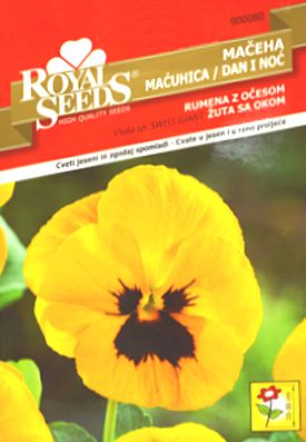 rs maćuhica dan i noć žuta