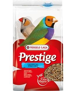 prestige-tropske-zebe